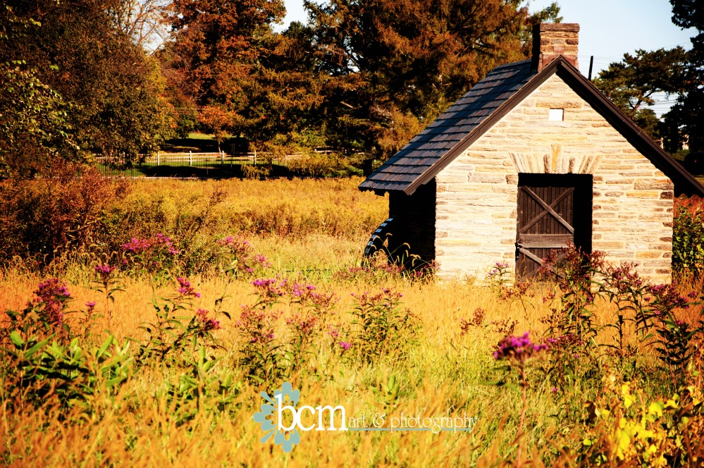 2012 Year in Pictures - bcm art & photography