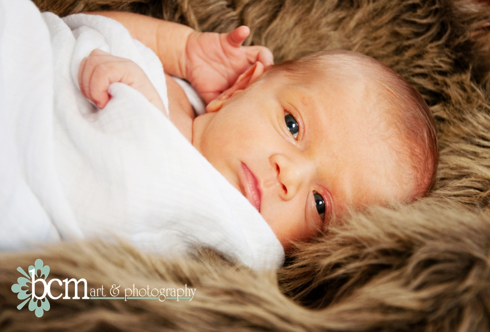Newborn Portraits ~ bcm art & photography