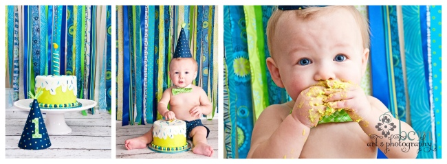 1st Birthday Portraits ~ bcm art & phtography