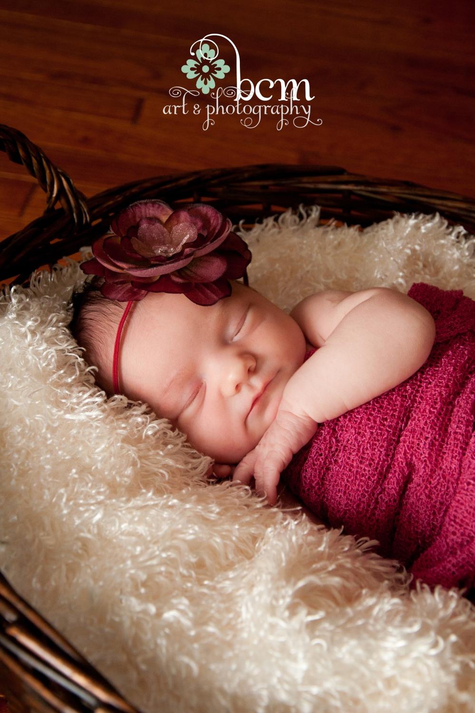 Newborn Portraits ~ bcm art & photograpy