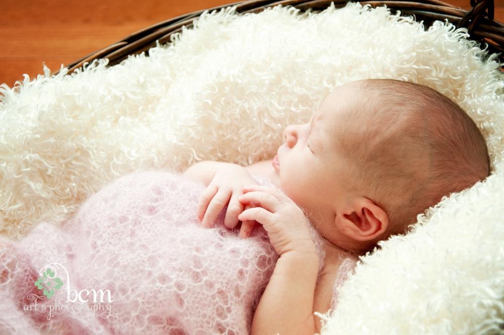 Newborn & Family Portraits ~ bcm art & Photography 2013